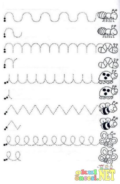 Çok Çeşitli Çizgi Çalışmaları - Okul Öncesi NET / Okul