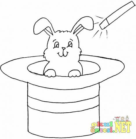 Denizatı Tavşansalyangoz Boyama Sayfası Okul öncesi Okul