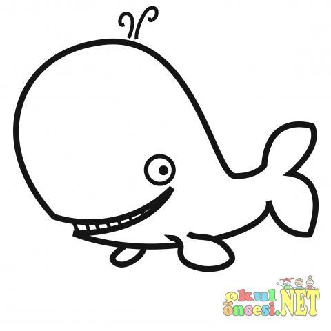 Deniz Canlıları Okul öncesi Okul öncesi Etkinlikleri Ana Okulu