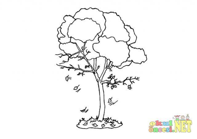 Ağaç Boyama Sayfaları 28 Tane Okul öncesi Okul