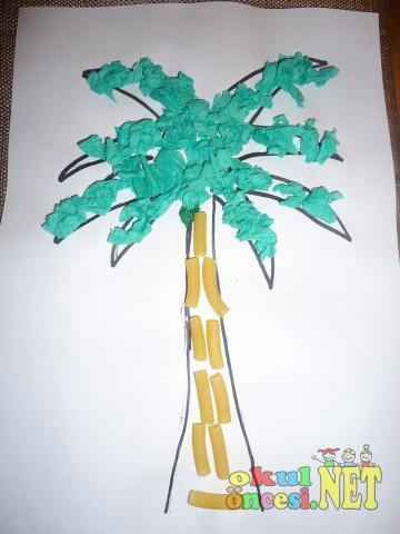 Palmiye Ağacı Okul öncesi Okul öncesi Etkinlikleri Ana Okulu
