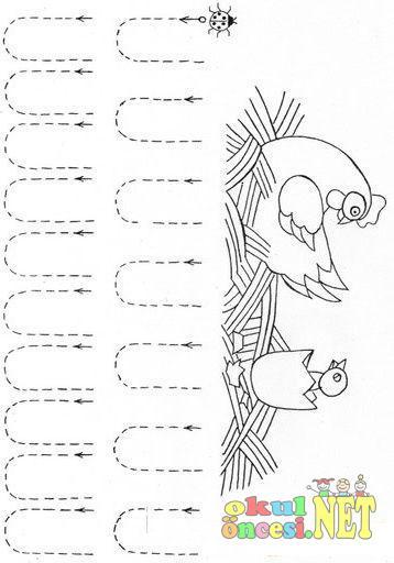 Tavuk Ve Civcivli çizgi çalışma Sayfası Okul öncesi Okul öncesi