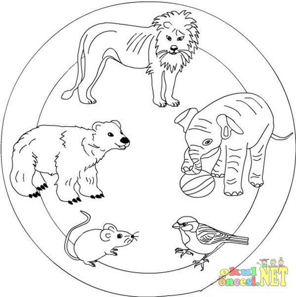 Hayvanlar Ile Ilgili Mandala Ornegi Okul Oncesi Okul Oncesi