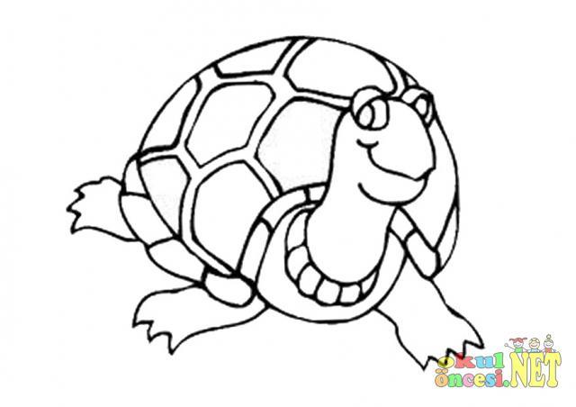Kaplumbağa Boyama Sayfası Okul öncesi Okul öncesi Etkinlikleri