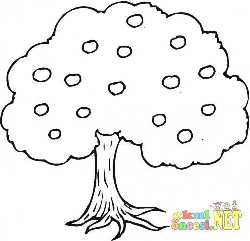 Ağaç Boyama Sayfası Okul öncesi Okul öncesi Etkinlikleri Ana Okulu