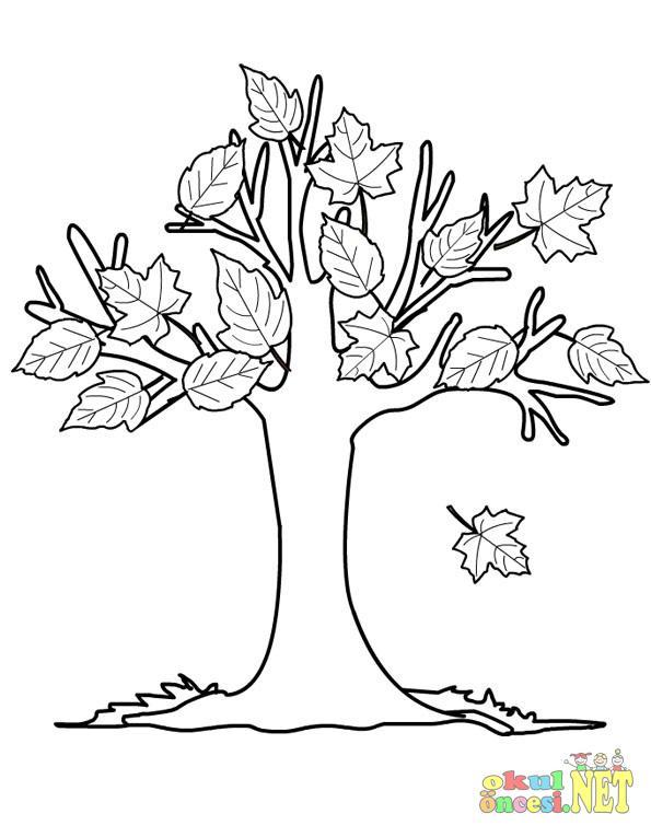 Sonbahar Ağaçları Okul öncesi Okul öncesi Etkinlikleri Ana Okulu
