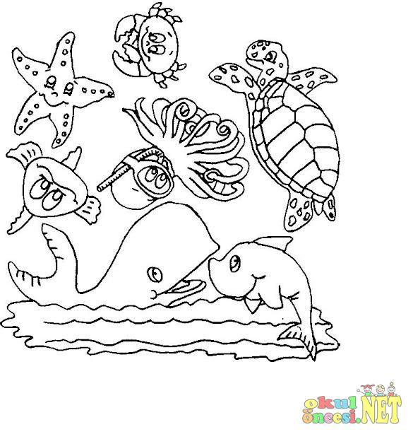Denizde Yaşayan Canlılar Okul öncesi Okul öncesi Etkinlikleri