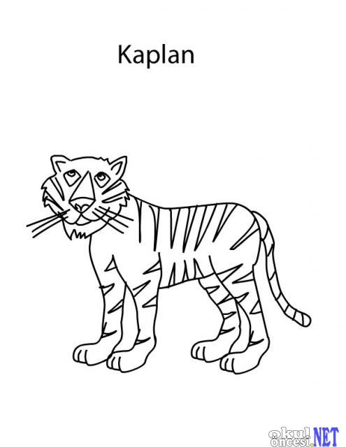 Ormanda Yaşayan Hayvanlar Boyama Sayfaları Yabani Hayvanlar Okul
