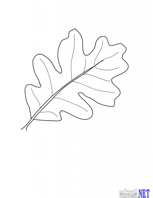 Sonbahar Yaprakları Boyama Sayfaları Yaprak Kalıbı Okul öncesi