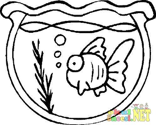 Balıklarla Akvaryum Ve Fanus Boyamaları Okul öncesi Okul öncesi