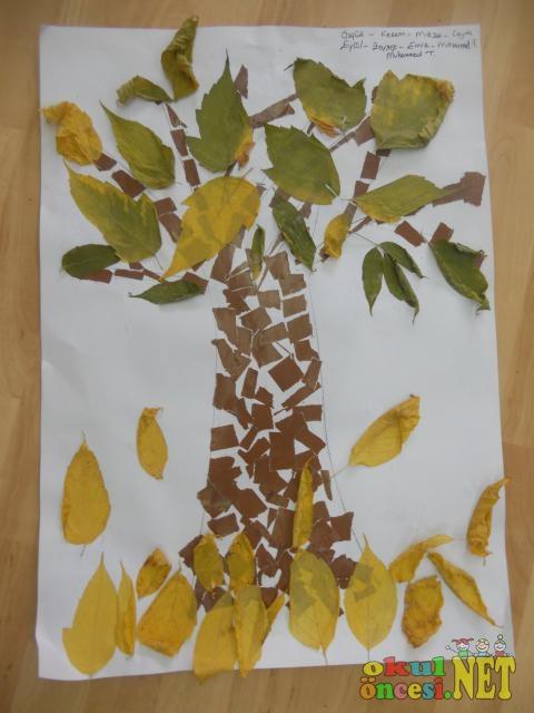 Kurumuş Yapraklardan Sonbahar Ağacımız Okul öncesi Okul öncesi