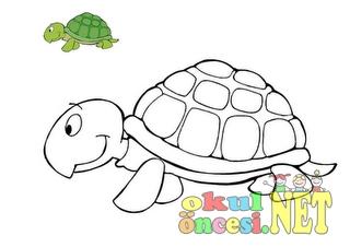 şirin Hayvanlar Okul öncesi Okul öncesi Etkinlikleri Ana Okulu