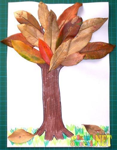 Kuru Yapraklarla Sonbahar Ağacı Kalıplı Okul öncesi Okul