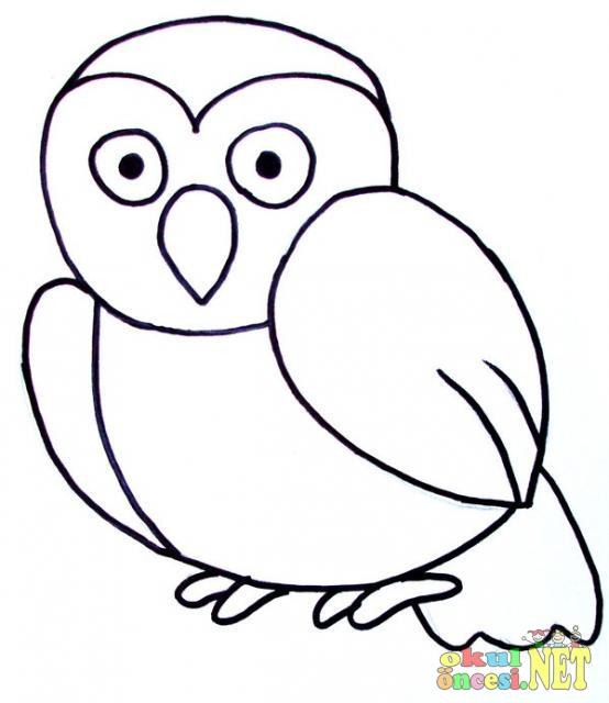 Baykuş Ve Sincap Boyama Sayfası Okul öncesi Okul öncesi