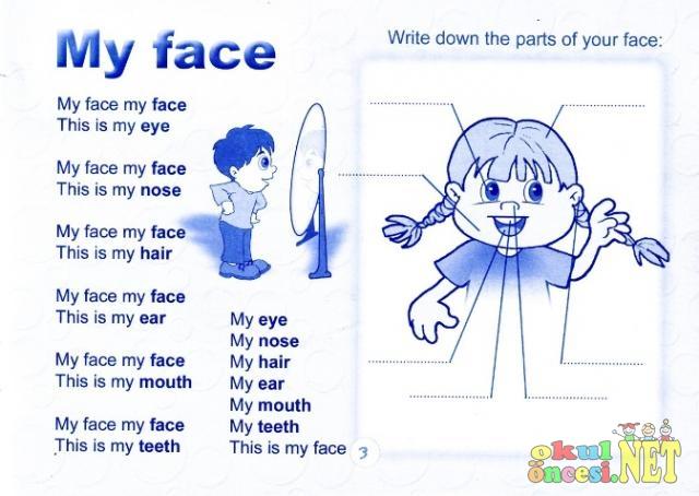 My Face Renkli çalışma Sayfası Okul öncesi Okul öncesi
