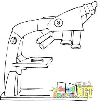 Mikroskop Boyama Okul Oncesi Okul Oncesi Etkinlikleri Ana Okulu