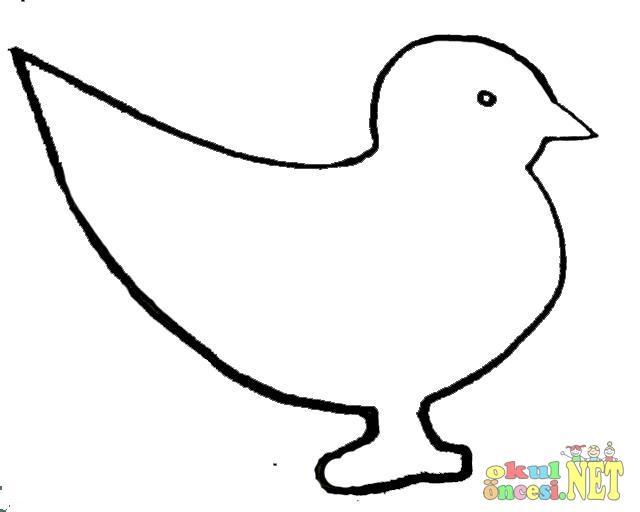 (Yeni 2019) Kuş Boyama Okul öncesi