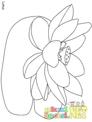 Nilüfer çiçeği Boyamaları Okul öncesi Okul öncesi Etkinlikleri